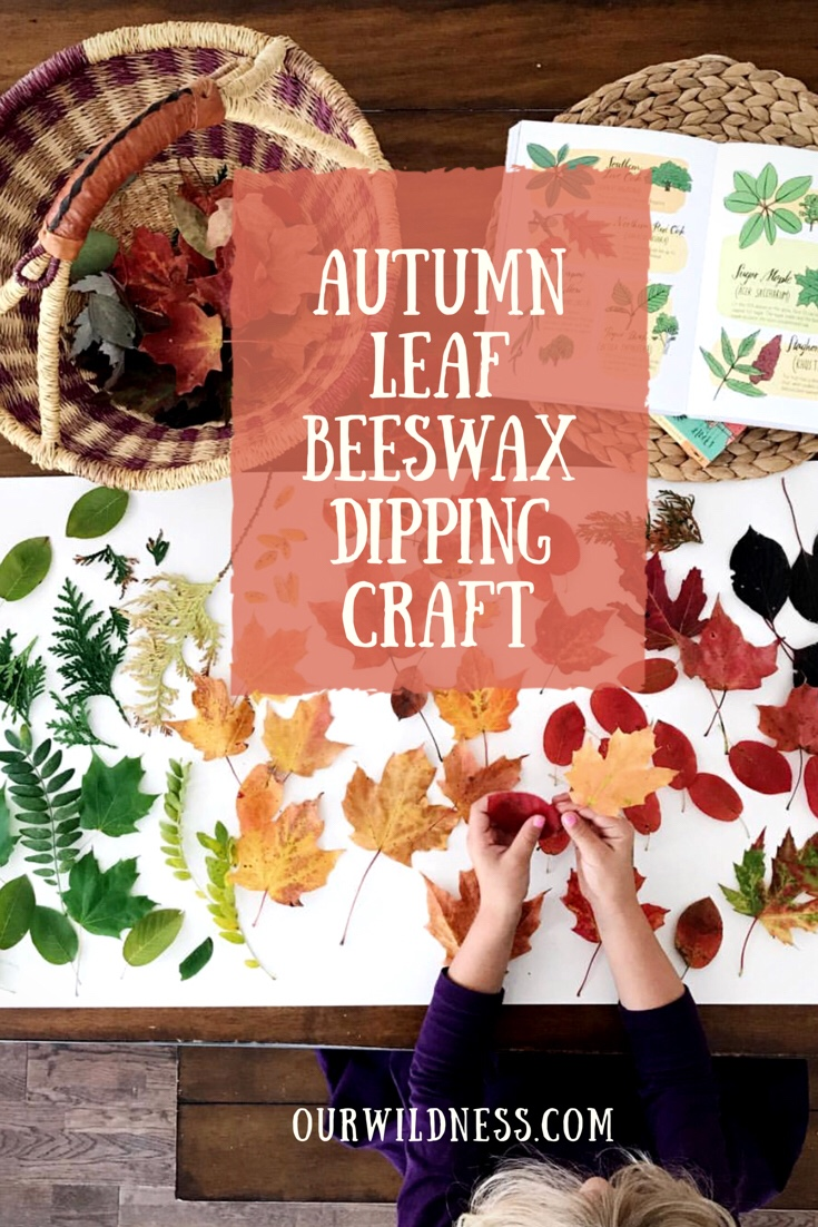 Beeswax Leaf Dipping